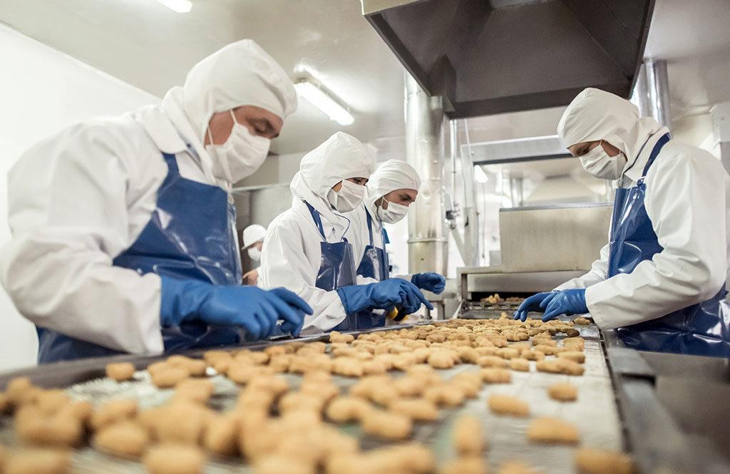 Aplikasi Pest Control dalam Industri Makanan