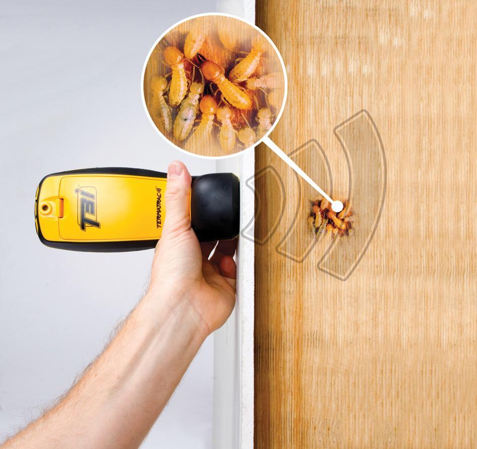alat detector rayap