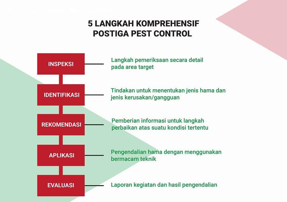 5 Langkah Komprehensif Postiga Pest Control
