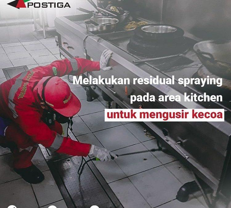 Manfaat Menggunakan Jasa Pest Control Bagi Bisnis Anda
