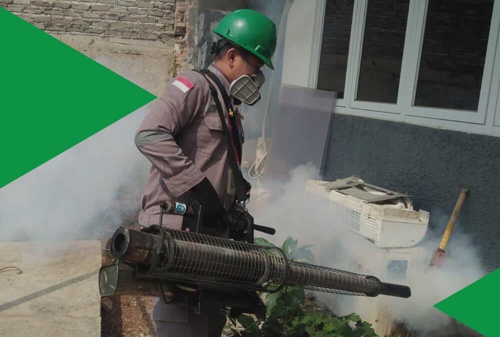 5 Fakta tentang Fogging Nyamuk