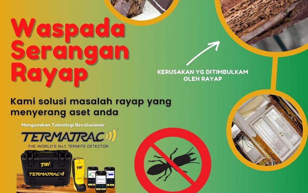 manfaat jasa anti rayap